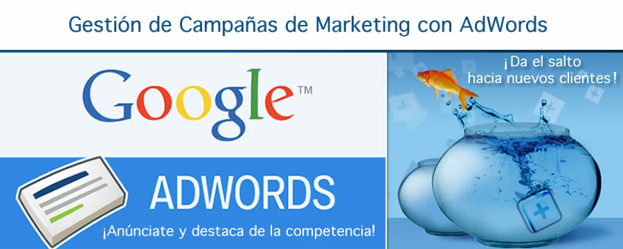 Gestion AdWords